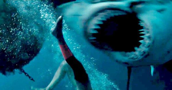 Lo squalo affamato